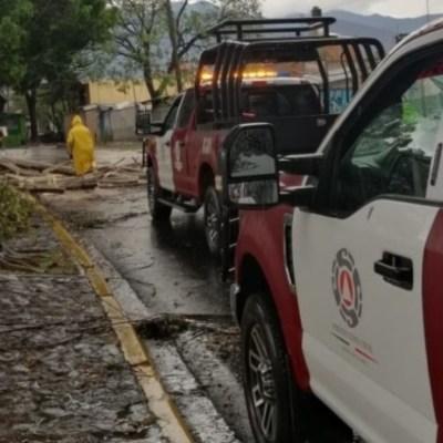 Lluvias y viento dejan inundaciones y caída de 17 árboles en Oaxaca