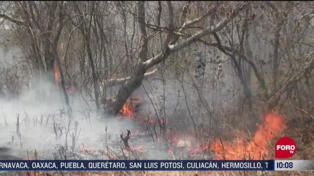 FOTO: 2 de mayo 2020, continua el combate de 42 incendios forestales en quintana roo