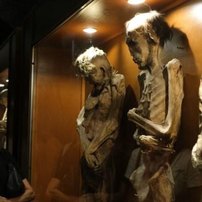 Denuncian desaparición de 22 momias de Guanajuato