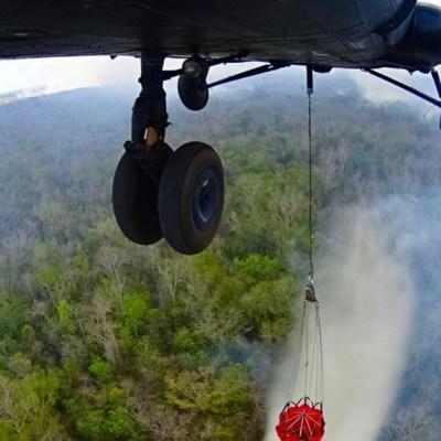 Incendios forestales destruyen más de 11 mil hectáreas en Quintana Roo