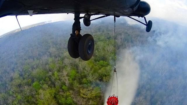 Incendios destruyen más de 11 mil hectáreas en Quintana Roo