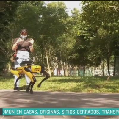 Perro robot vigila parques para evitar contagios por coronavirus