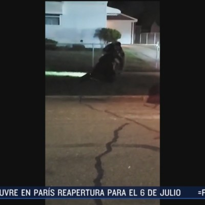 Policía golpea a mujer que se resiste a ser detenida en Michigan, EEUU