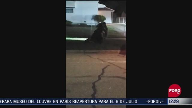 policia golpea a mujer que se resiste a ser detenida en michigan eeuu