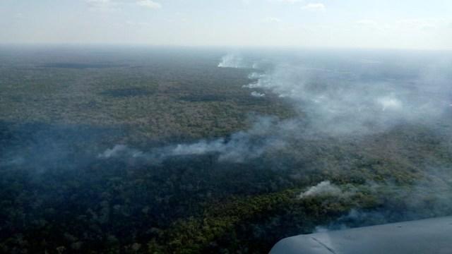 FOTO: Afectan 66 incendios forestales casi 11 mil hectáreas en México, el 03 de mayo de 2020