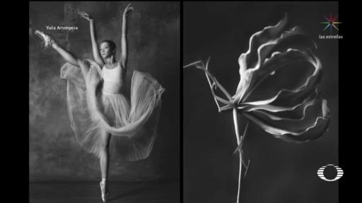 bailarinas y flores proyecto que mezcla movimientos de ballet y diferentes flores
