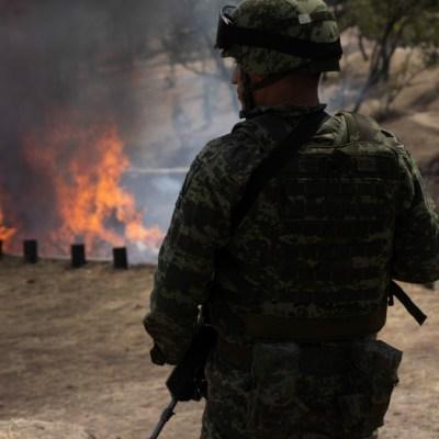 Cárteles mexicanos se fortalecen en Colombia aprovechando coronavirus