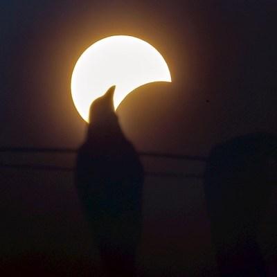 Fotos: Así se vio en el mundo el eclipse de Anillo de Fuego