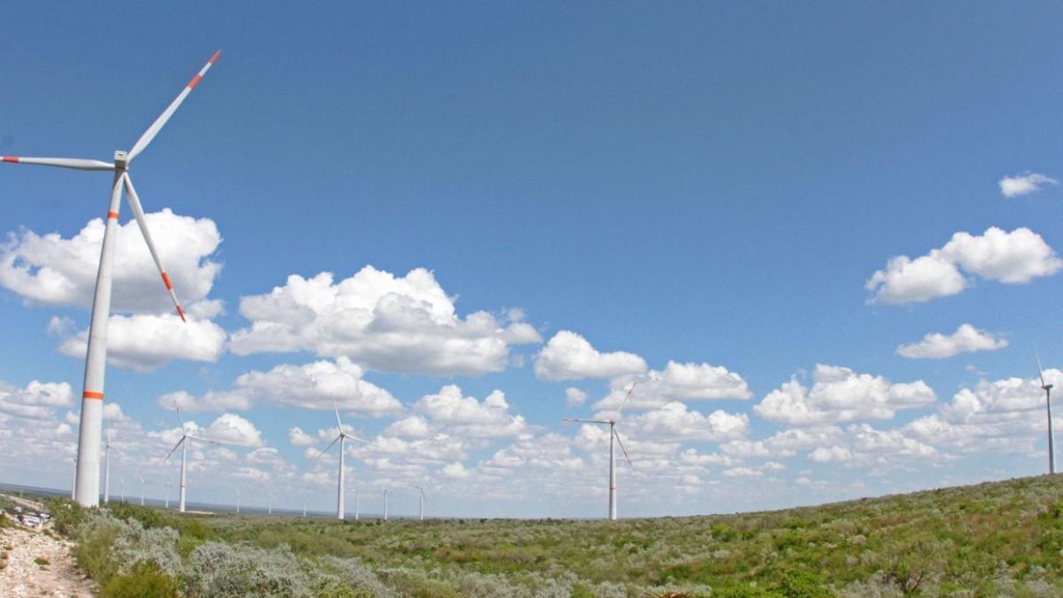 Parque-eólico-Greenpeace-logra-suspensión-contr- política-energética
