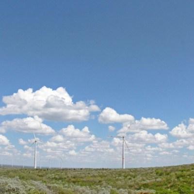 Greenpeace logra suspensión definitiva contra política energética de AMLO