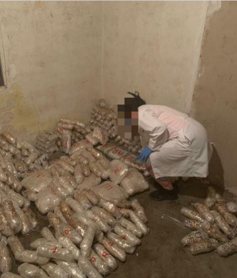 FGR y Sedena aseguran media tonelada de crystal y varios kilos de drogas en Sonora.