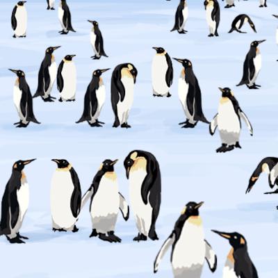 Encuentra cuatro pingüinos con sombrero