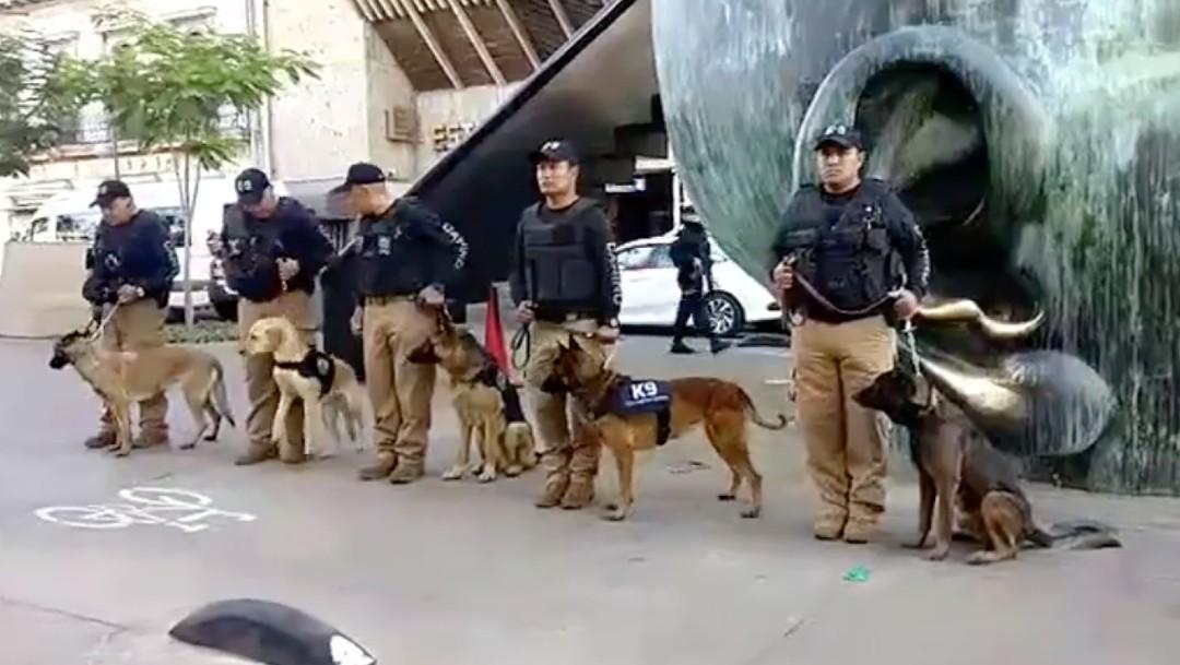 Certifican a escuadrón canino en detección de narcóticos y cadáveres en Guadalajara