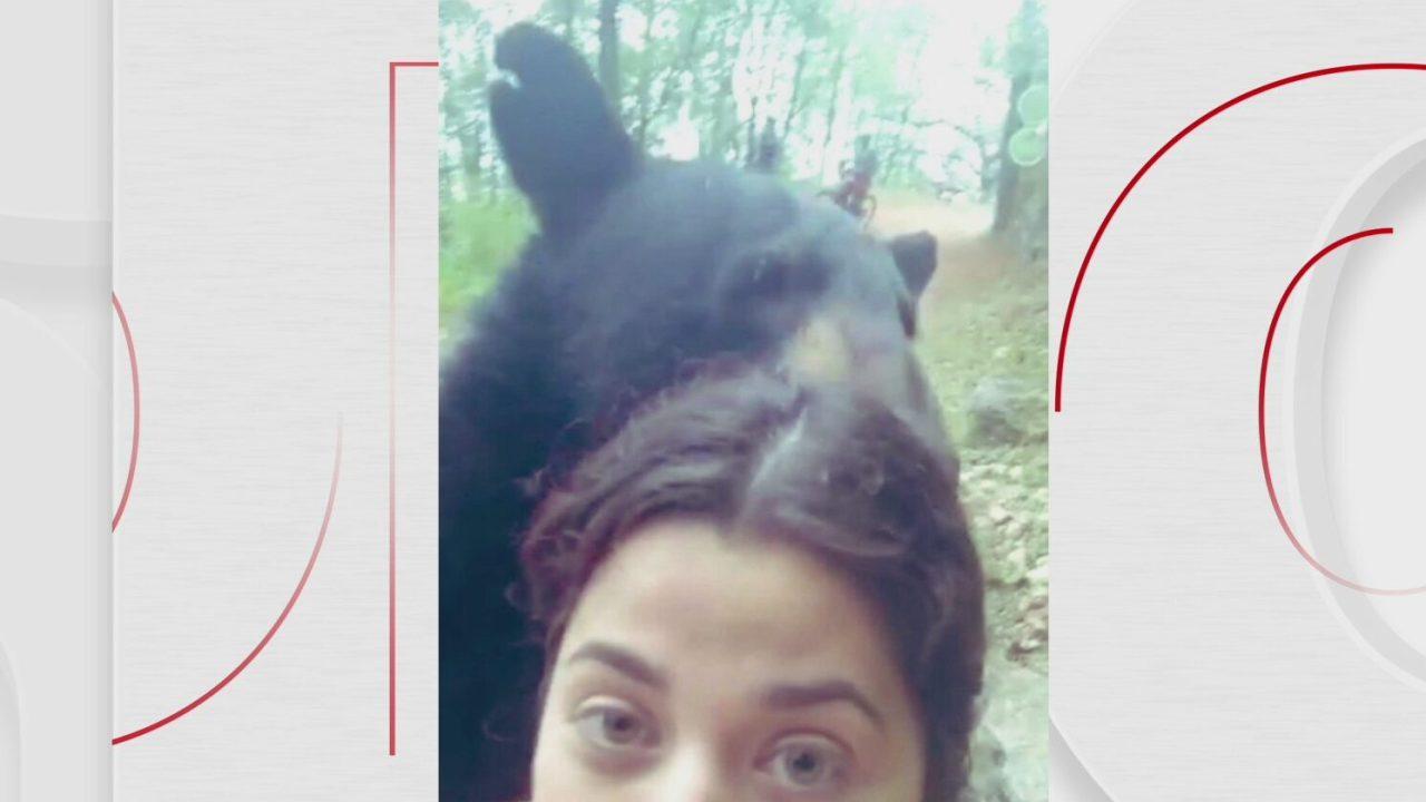 mujer se tomo selfie con oso en parque ecologico chipinque nuevo leon
