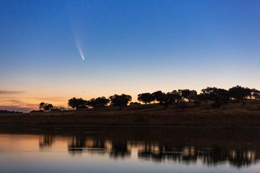 Nuevas fotografías del cometa Neowise tras rodear el Sol