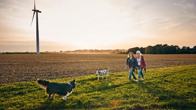 Dos mujeres dan un paseo con sus perros en el campo en Schleswig-Holstein, Alemania