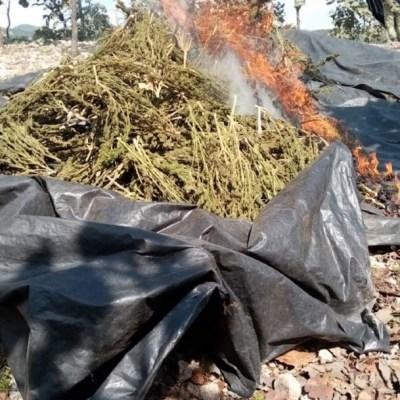 Ejército asegura droga y laboratorio clandestino en operativos en Durango y Sinaloa