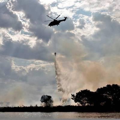 Incendios del Amazonas en Brasil rompen récords en julio; analistas esperan escenario peor
