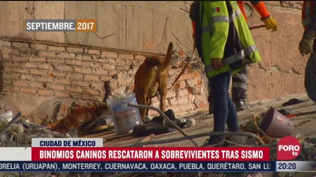 primeros rescatistas binomios que llegaron al derrumbe a buscar a sosbrevivientes del sismo de CDMX en 2017