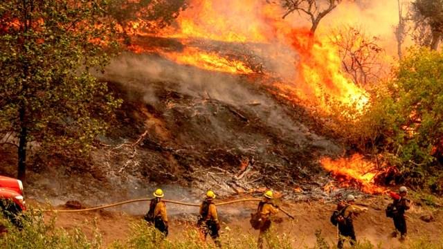 California arde como nunca en 33 años: Incendios queman récord de más de 800 mil hectáreas