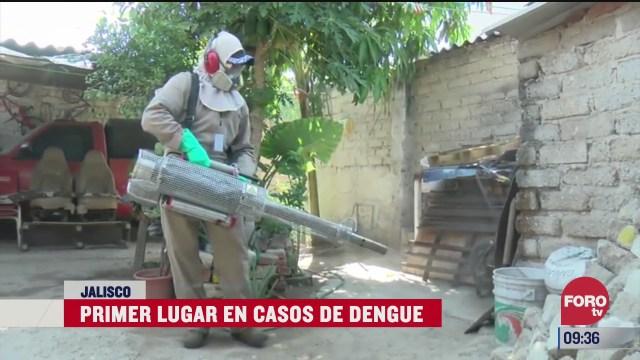 jalisco es el primer lugar en casos de dengue