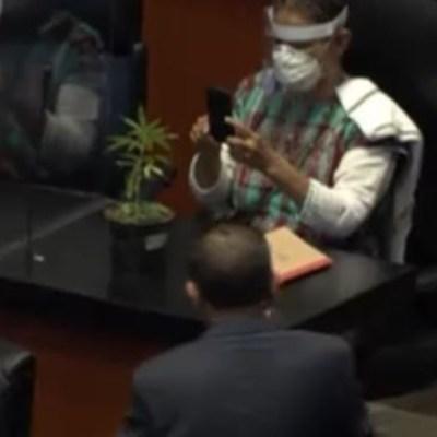 Senadora de Morena Jesusa Rodríguez lleva planta de marihuana al Senado