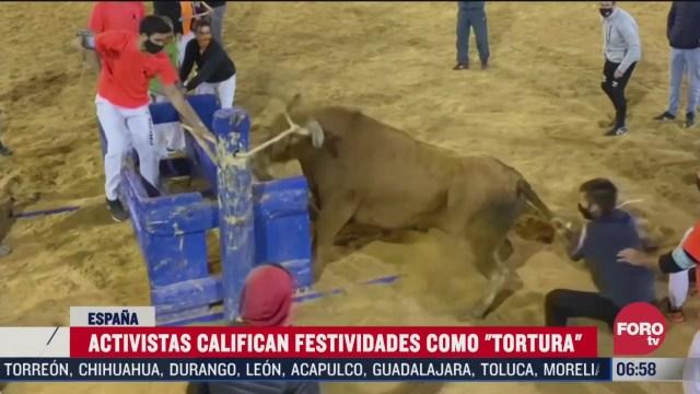activistas califican como tortura festividades del toro en espana