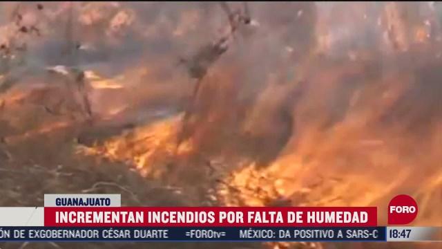 aumentan los incendios forestales en guanajuato por sequia