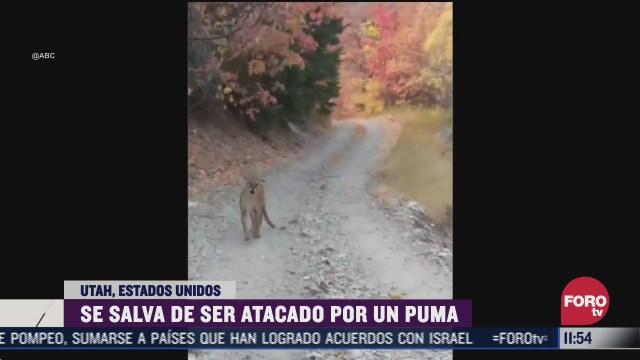 excursionista se salva de ser atacado por un puma