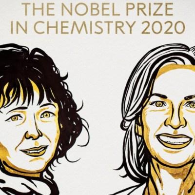 Premio Nobel de Química 2020 a dos científicas por reescribir el código de la vida