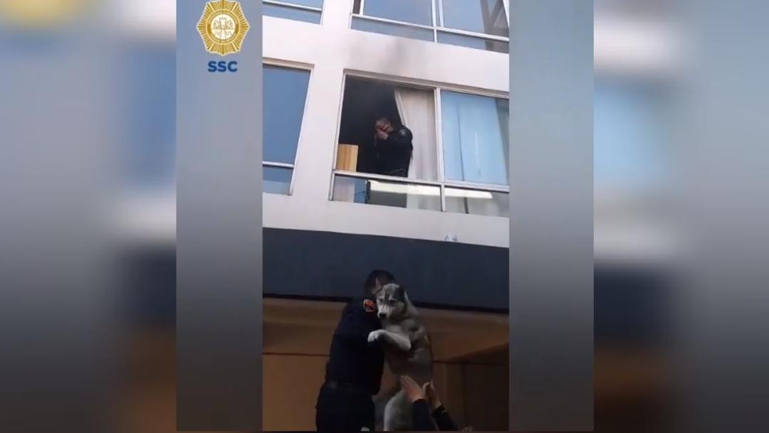 Policías rescatan a un perrito durante un incendio en una vivienda en la alcaldía Benito Juárez