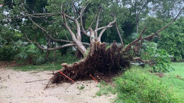 Zonas arqueológicas de Chichén Itzá, Ek Balam y Cobá cierran por daños de Gamma