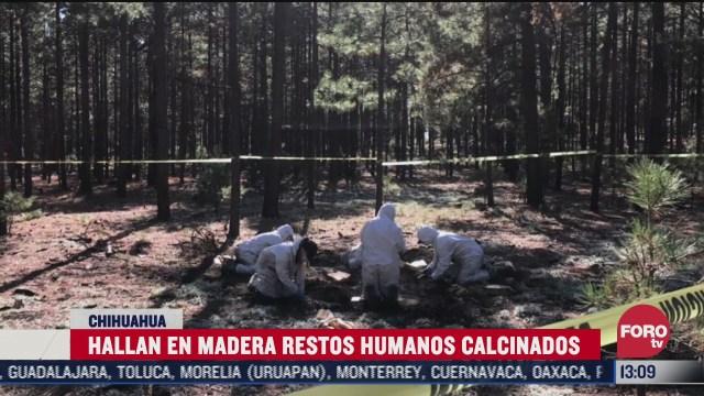 hallan restos humanos en chihuahua