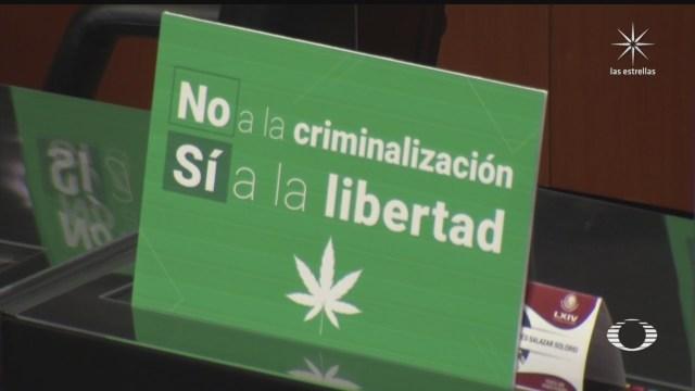 Senado aprueba uso lúdico de la marihuana