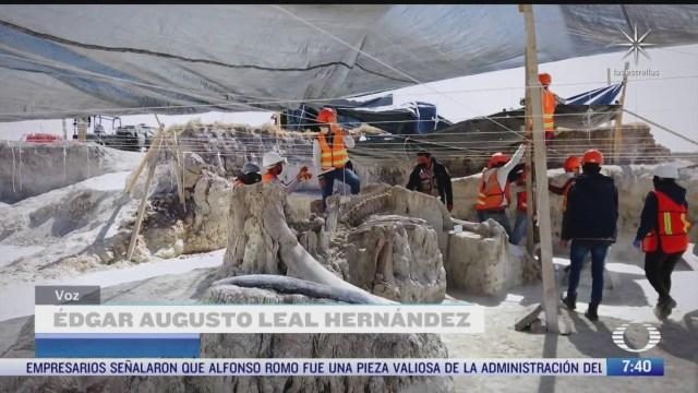 mas de 200 restos de mamuts han sido hallados en santa lucia