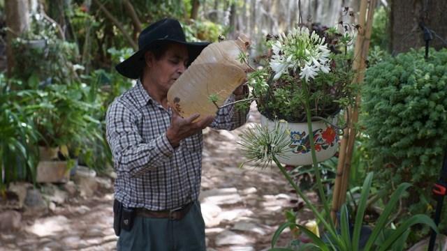 """Julio Ángel Miguel Ramírez, maestro rural, riega las plantas de su bosque """"El paraíso de los Arcos"""""""