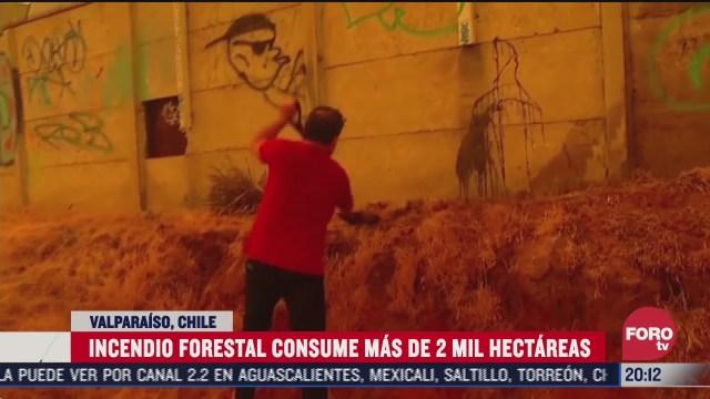 continua incendio en reserva de bosque en chile
