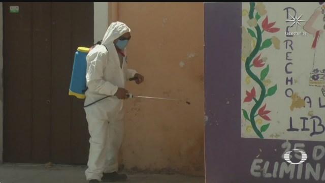 desarrollan nuevo repelente contra mosquito transmisor de enfermedades