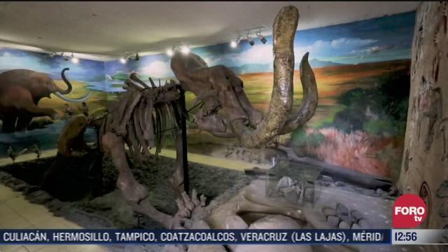 el mamut de santa maria magdalena huizachitla