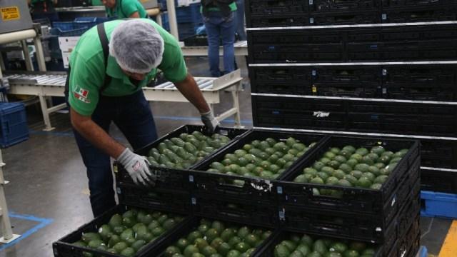 Valor-de-exportaciones-bajó-9.3-por-ciento-en-2020-INEGI