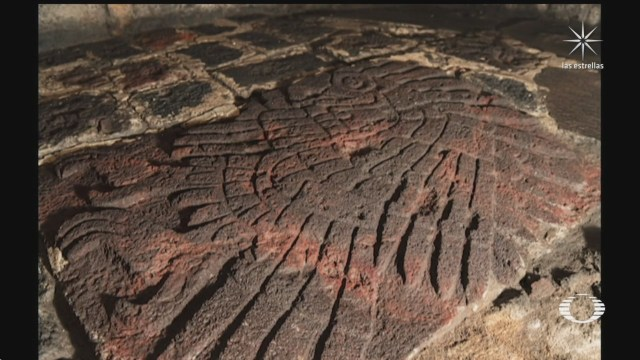 inah halla imagen de un aguila real que data de hace mas de 500 anos