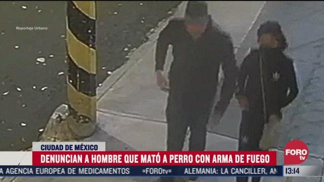 sujeto mata a un perro con su arma de fuego en la cdmx