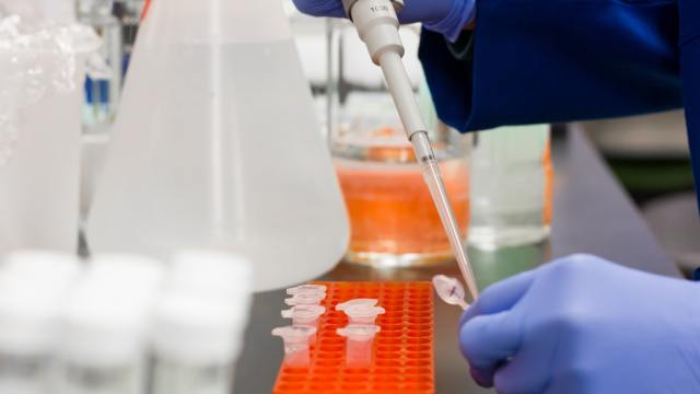 Crean prueba casera de COVID-19 tan precisa como la PCR