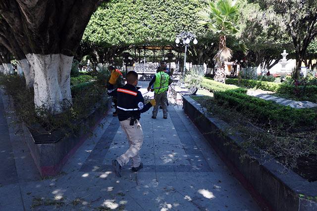 En el municipio de Comonfort en Guanajuato, pusieron ramas con espinas en bancas de la vía pública para evitar contagios de COVID-19