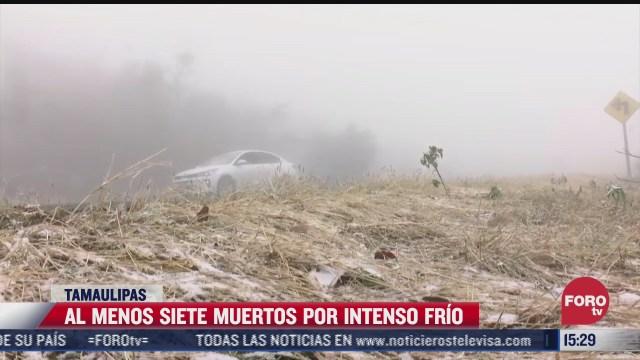 siete muertos por intenso frio en tamaulipas