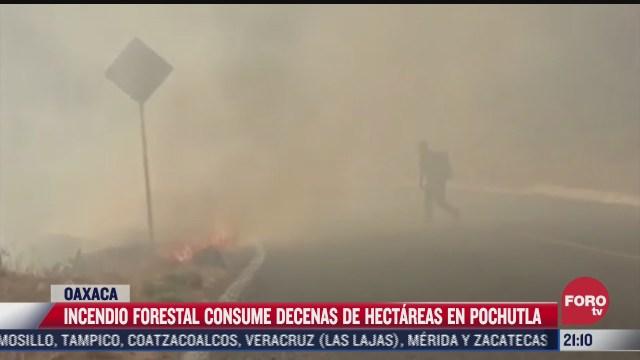 incendio forestal consume decenas de hectareas en pochutla oaxaca
