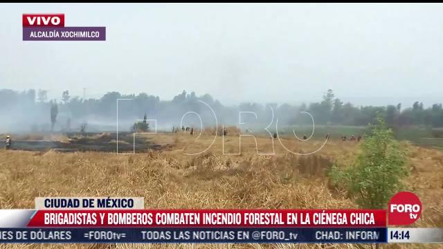 combaten incendio forestal en xochimilco