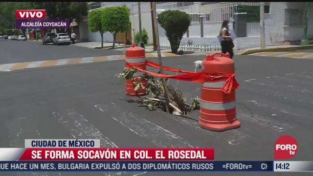 denuncian socavon en el rosedal en coyoacan