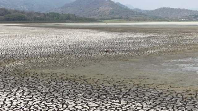 Desaparece laguna en Veracruz por explotación humana y no por sequía