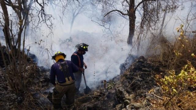 Controlan-incendio-en-Fuentes-del-Pedregal-alcaldía-Tlalpan